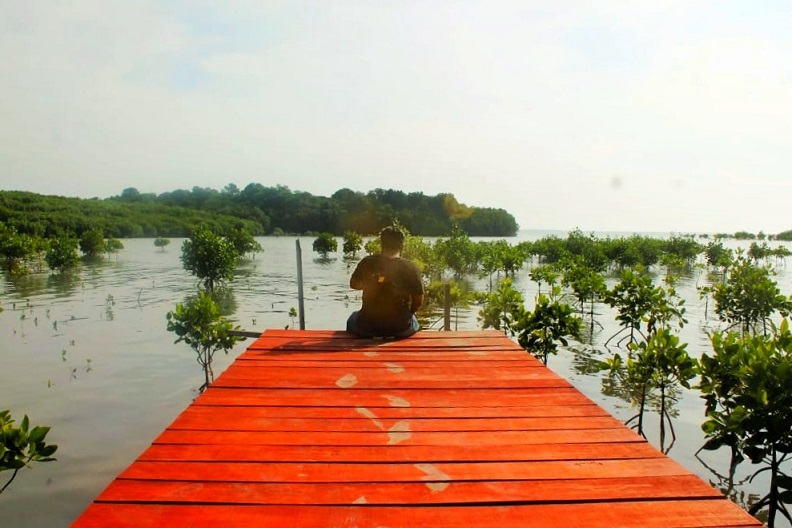 Menengok Kondisi Wisata Hutan Mangrove di Rembang Ditengah Pandemi Covid-19
