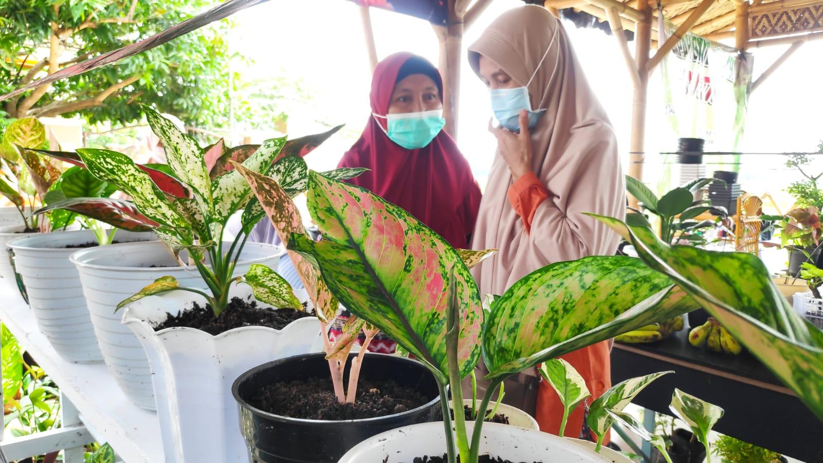 Pecinta Tanaman Hias Wajib Intip Expo Rumah Tumbuh Khodijah Rembang